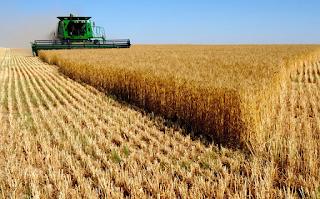 Russische Übersetzung in Landwirtschaft