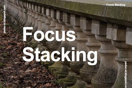 Inilah Cara Memotret Focus Stacking Dan Cara Editnya Memakai Photoshop