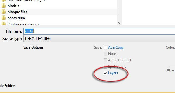Ensure Layers option is checked while saving PSD or layered TIFF file