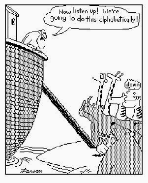 Funny Noah's ark cartoon - Now listen up!  We're going to do this alphabetically!  Damn (said the Zebra)