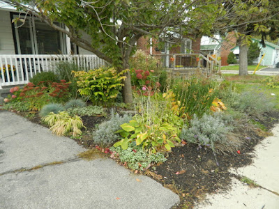 Toronto Fall Front Yard Cleanup Birch Cliff before by Paul Jung Gardening Services