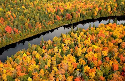 Fall head over heels with Michigan camping and lodging
