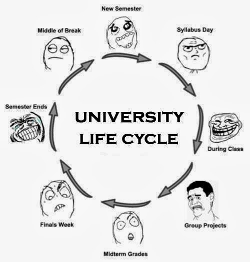 The University Life Cycle ~ ROFL ZONE