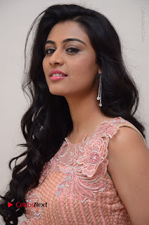 Actress Neha Hinge Stills in Pink Long Dress at Srivalli Teaser Launch  0021.JPG