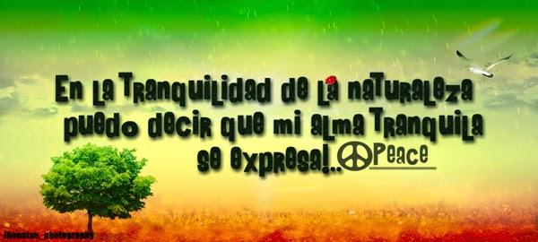 Frases De Canciones Reggae De Amor