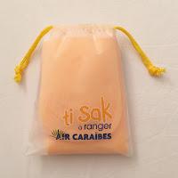 Avis compagnie aérienne Air Caraïbes Paris Fort de France Ti Sak
