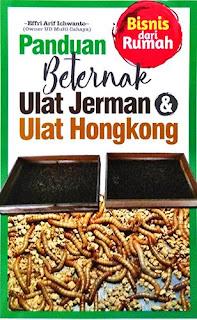 PANDUAN BETERNAK ULAT JERMAN & ULAT HONGKONG