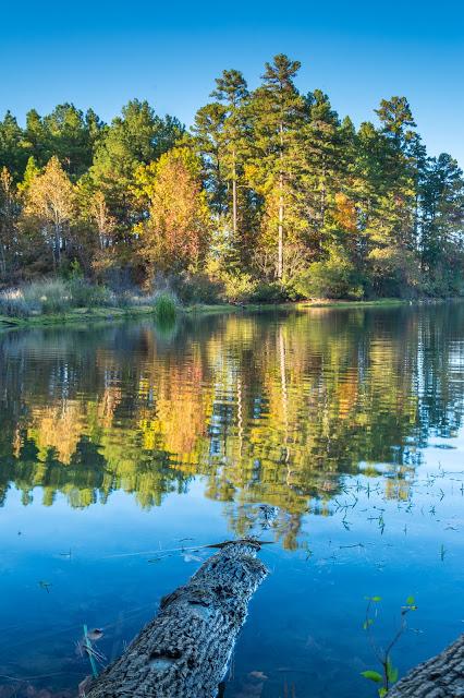 Tyler State Park Lake
