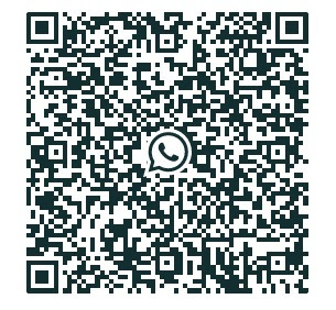 QR Code (example)
