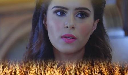 Vaisakhi Special 2016 Latest Punjabi Song Collection Tera Ghusa Panj Taara