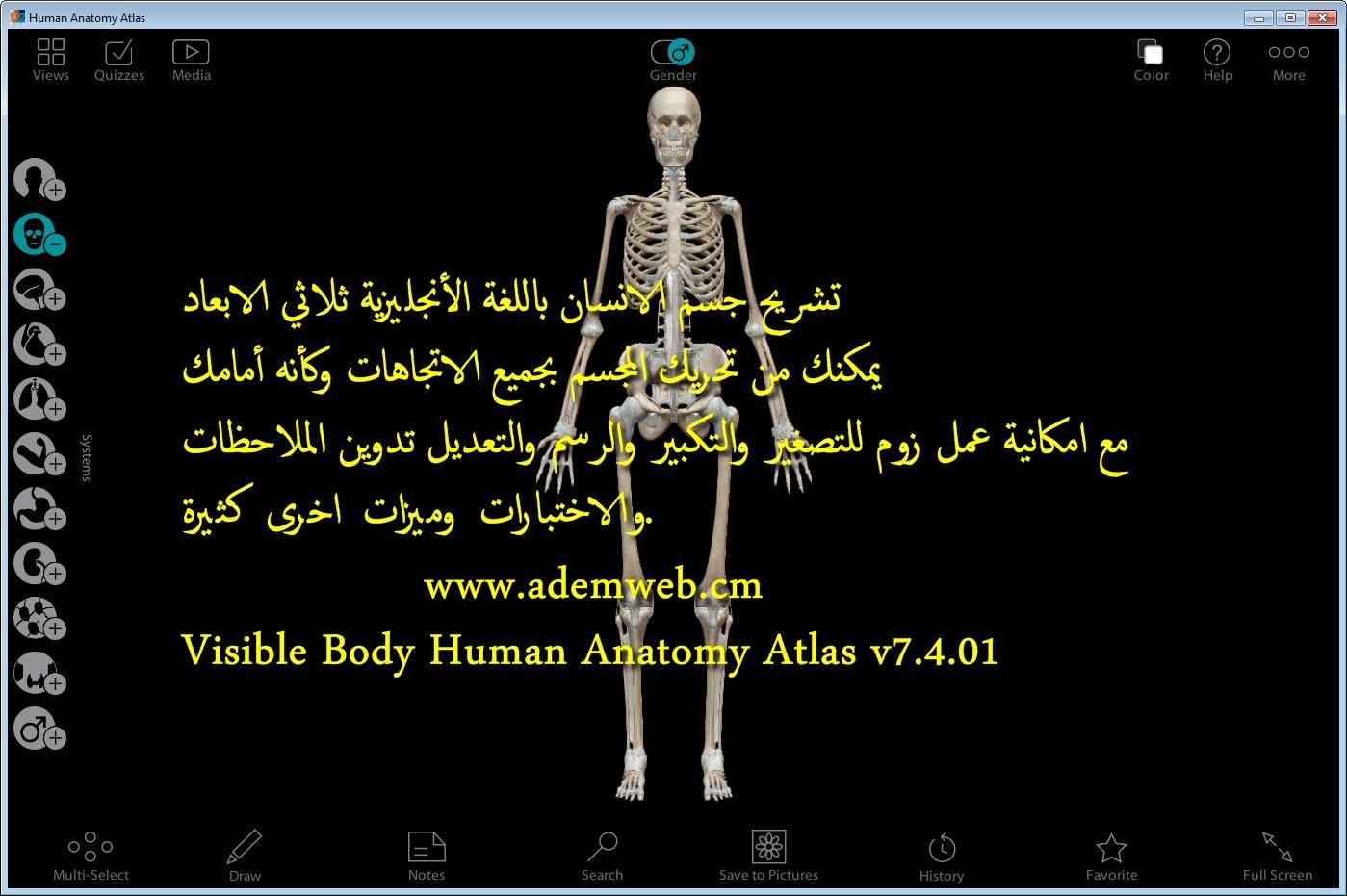 Visible Body Human Anatomy Atlas V7401
