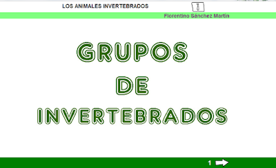 http://www.ceiploreto.es/sugerencias/cplosangeles.juntaextremadura.net/web/curso_3/naturales_3/grupos_invertebrados_3/grupos_invertebrados_3.html