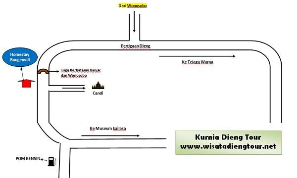 peta lokasi homestay bougenville dieng plateau