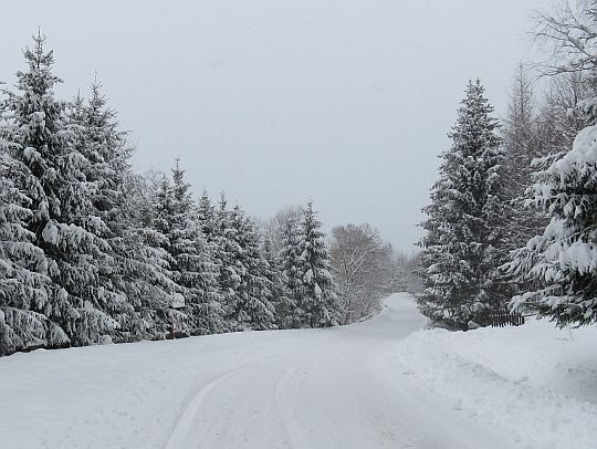 Droga przez Dwernik.