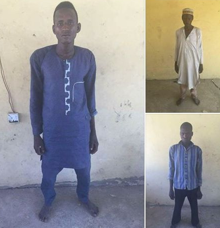 3 boko haram terrorists arrested adamawa
