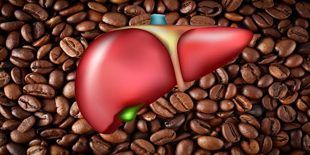 coffee, liver