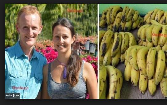 قرر هذا الزوجان تناول الموز لمدة 12 يوماً .. وهذا ما حصل لهما! شاهدوا كيف تغير شكلهما...