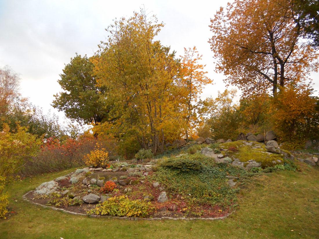 Il giardino in ottobre