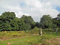 giardini botanici università hokkaido sapporo
