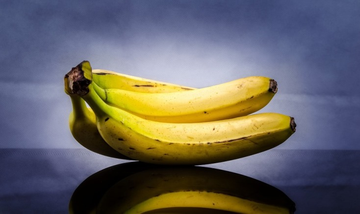 bananas against a blue-gray background.jpeg