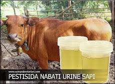 Urine Sapi PESTISIDA NABATI Pengendalian tungro dan bercak daun