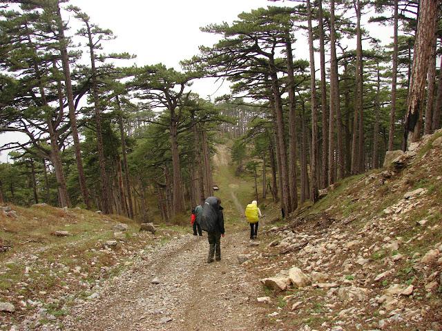 Самые высокие горы. Спуск с Кемаль-Эгерека в Ялту