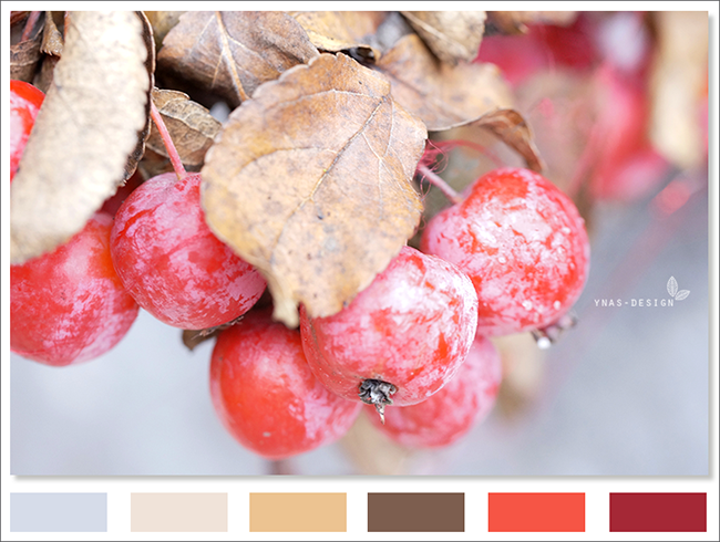 Ynas Design Blog | Colorcode | Red Fruits