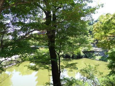 成相寺『底なしの池』