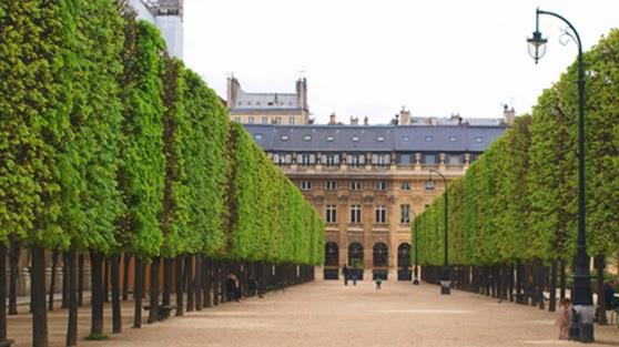Jardin du Palais Royal med stramt klippede træer
