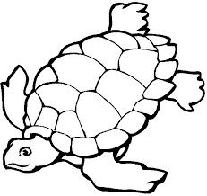 Desenhos Para Imprimir E Colorir De Tartarugas So Escola