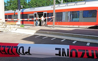 Terror On Swiss Train As Passengers Are Attacked By Man With 'Fire And Knife' Leaving Carriage Covered In Blood