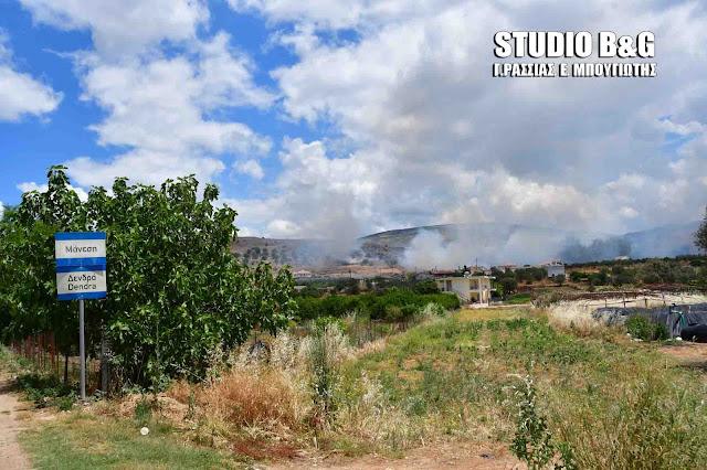 Μεγάλη πυρκαγιά παραλίγο να κάψει σπίτια στα Δενδρά Μιδέας στην Αργολίδα (βίντεο)