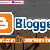 Blogger .tr Uzantısı Nasıl Kaldırılır ?