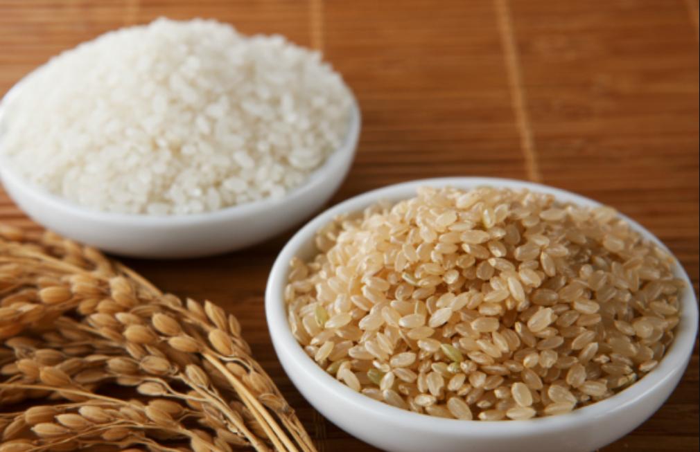 beras putih vs beras perang