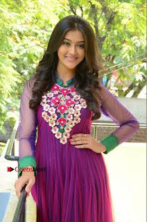 Actress Pooja Jhaveri Latest Stills in Purple Salwar Kameezt at Dwaraka Success Meet  0143.JPG