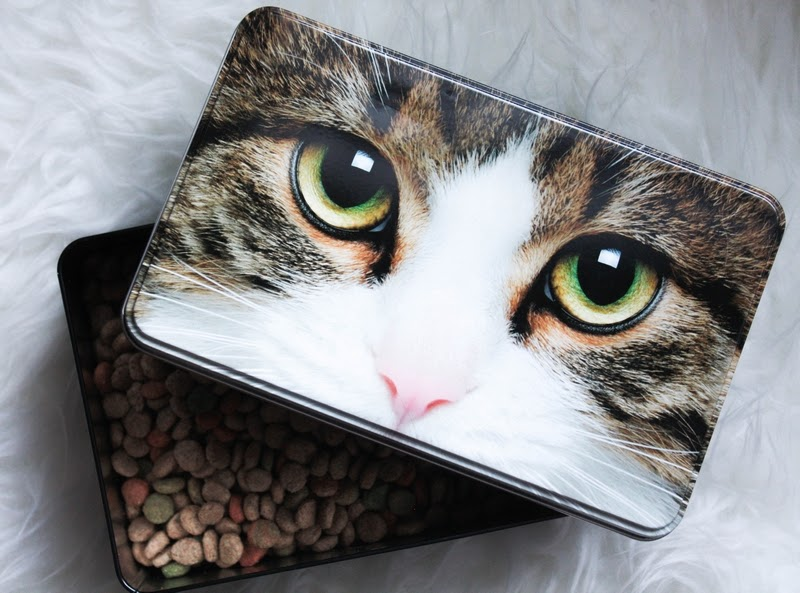 Christmas gift guide for cats & cat people