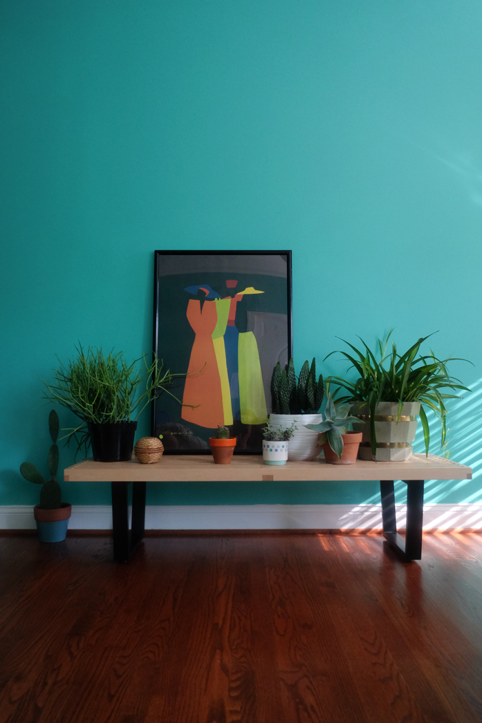 A beautiful collection of plants and colorful artwork pop against wall color