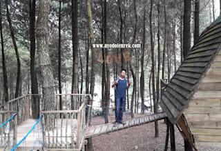 Gardu pandang dan jembatan kayu di Sumbersuko Forest