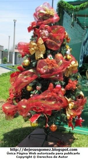 Árbol de Navidad en el ingreso del Hospital Negreiros (Callao - Perú). Foto de Arbol de Navidad de Jesus Gómez