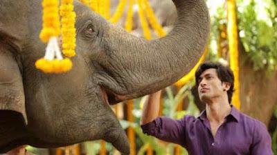 Junglee Movie Review Vidyut Jammwal Pooja Sawant