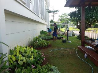 Jasa Pembuatan Taman di Cawang