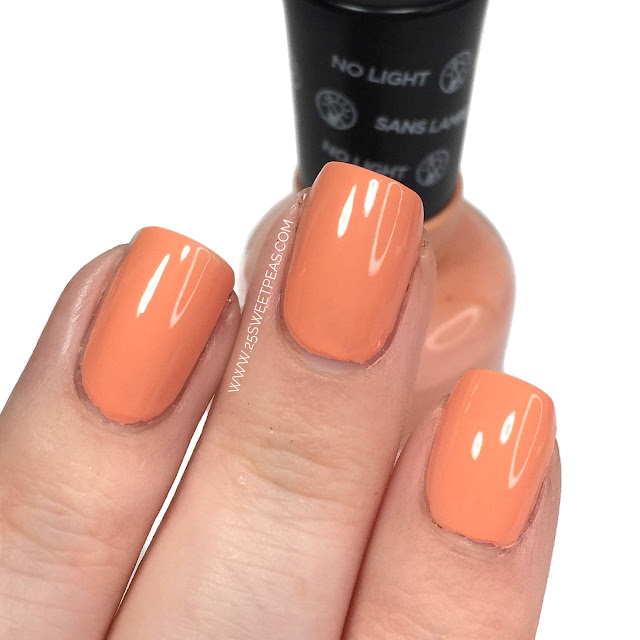 Sally Hansen Bourbon Belle