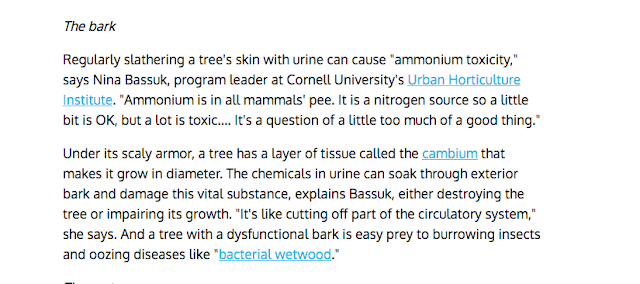 http://www.citylab.com/weather/2012/08/why-you-shouldnt-let-your-dog-pee-trees/3117/