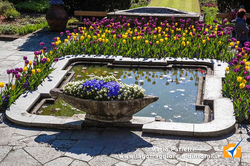Lago maggiore e dintorni villa taranto for Giardini terrazzati immagini
