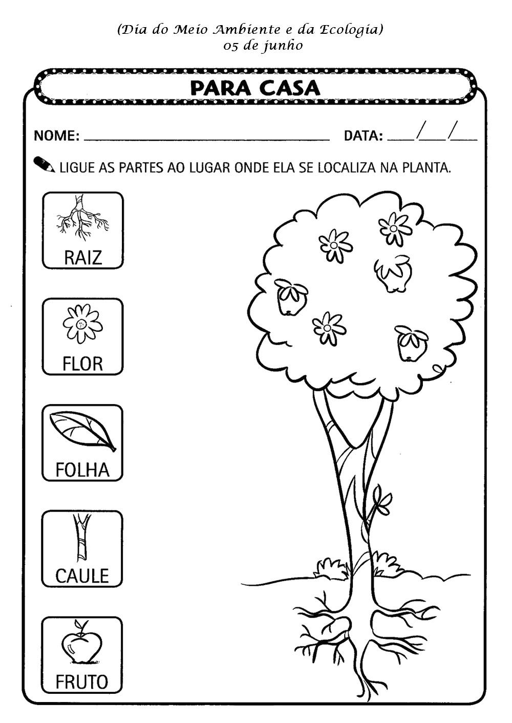 Dia Do Meio Ambiente E Ecologia Atividades Exercicios Desenhos