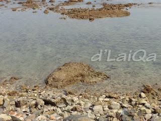 pemandangan tepi laut (4)