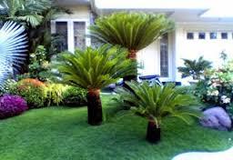 jasa buat taman rumah cantik murah