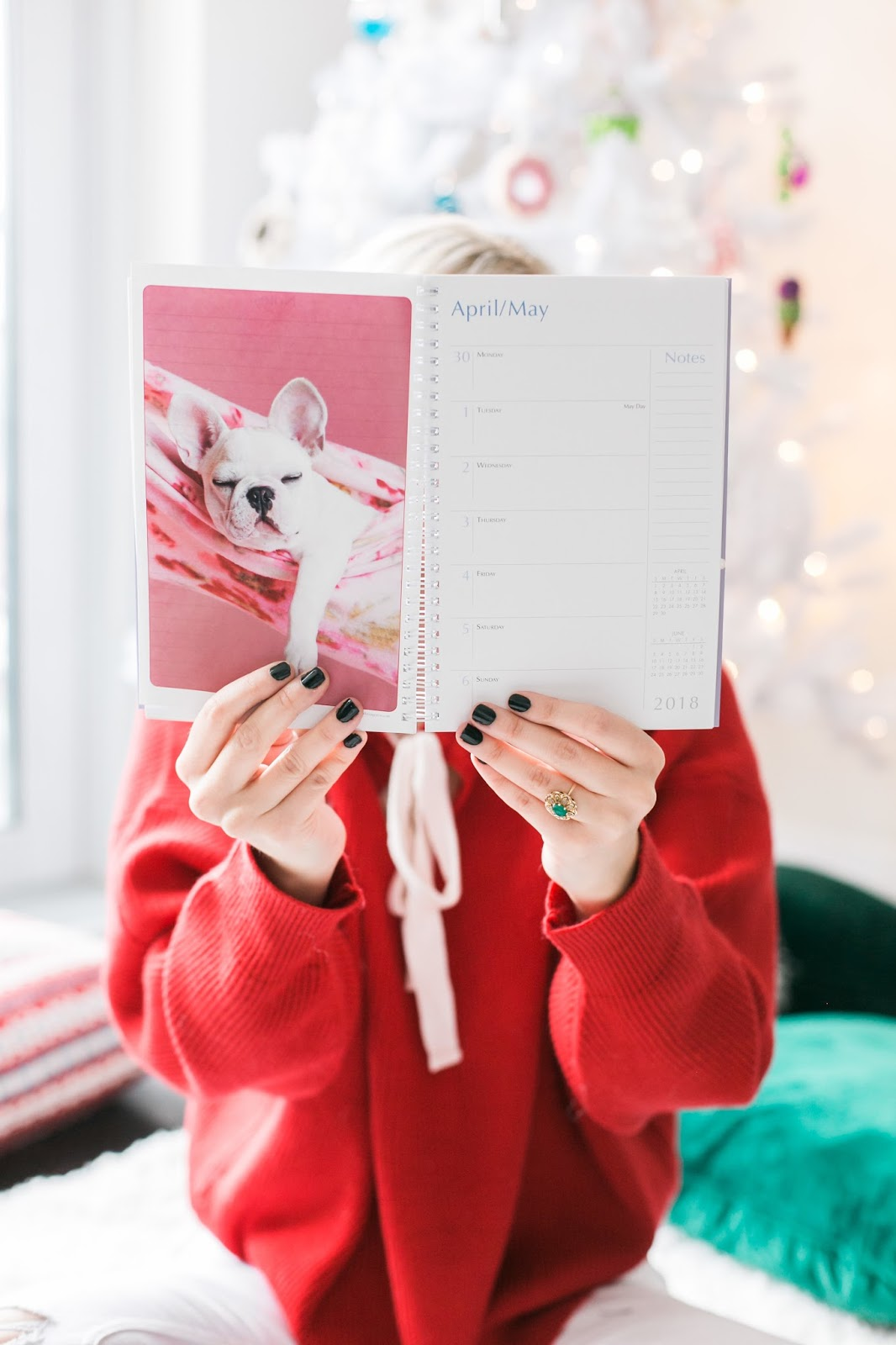 Bijuleni - Holiday Gift Guide For Her With Holt Renfrew Centre - puppies calendar