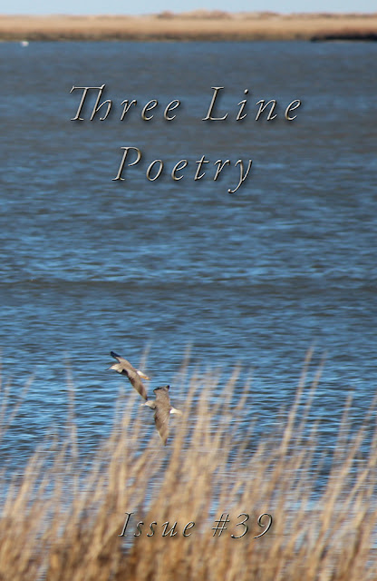 https://prolificpress.com/bookstore/three-line-poetry-c-2/three-line-poetry-issue-39-p-186.htmltags