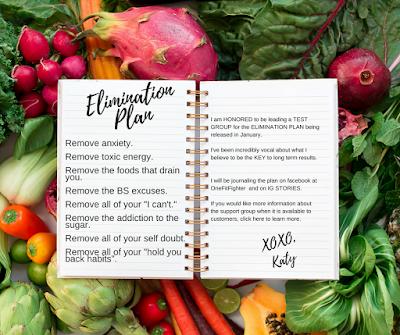 Elimination Meal Plan.  Elimination Diet, Melanie Mitro + Elimination, What is Elimination Diet,  2B Mindset Release